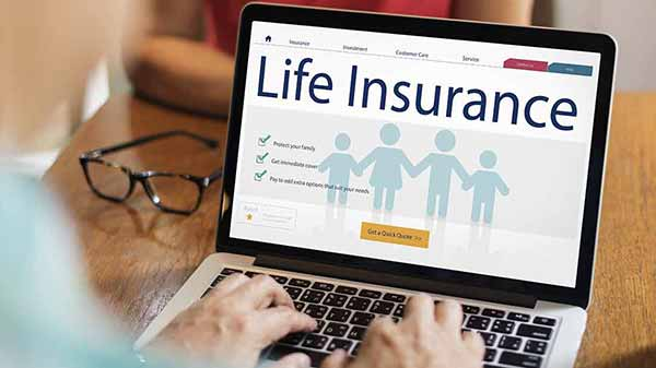 LIC and Private Insurance Companies: Learn the Difference
